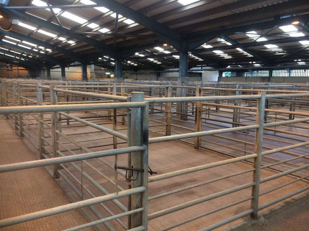 Interior Agricultural Building Cleaning After