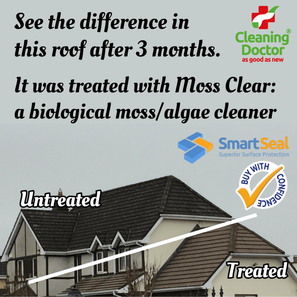 mossy roof before after outdoor cleaning services