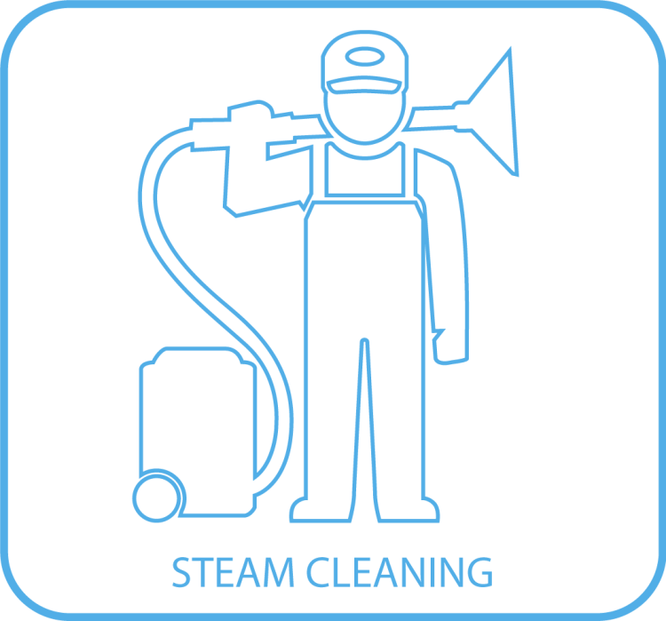 8. Steam Cleaning