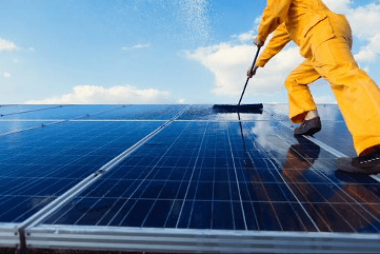 A professional cleaning solar panels.