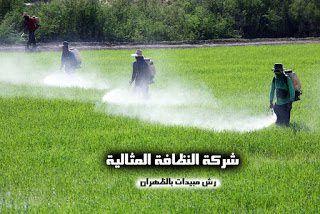 شركة رش مبيدات بالظهران 0531390740