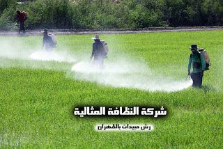 شركة رش مبيد بالظهران شركة رش مبيدات بالظهران شركة رش مبيدات بالظهران 0531390740 Pesticide spraying company in Dhahran