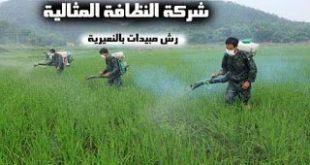 شركة رش مبيدات بالنعيرية