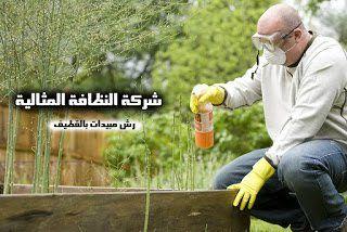 شركة رش مبيدات بالقطيف 0503152005