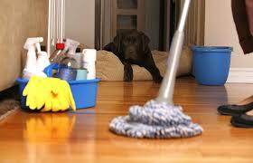 شركة تنظيف بالخفجي شركة تنظيف بالخفجي شركة تنظيف بالخفجي 0500389452 download 4