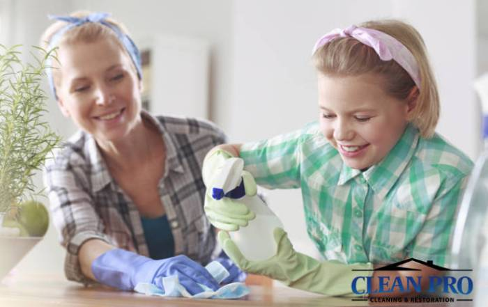 Spring Cleaning Clean Pro Cleaning & Restoration
