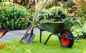 lawn care spring cleaning
