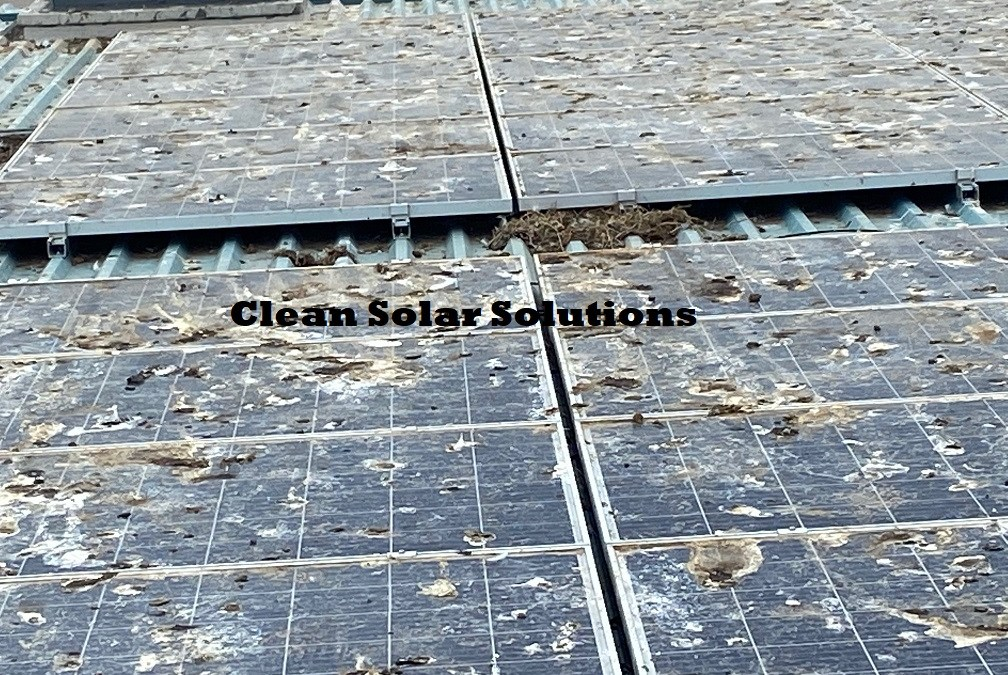 Solar Panel Cleaning In Aberdeen. Their Dirtiest Panels?