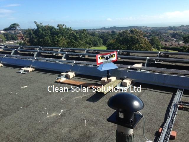 Bird Deterrents Stand Guard Over Solar Panels In East Sussex