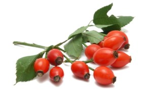 Rose Hips have powerful antioxidant qualities that positively affect the inside of your body, and can be applied externally for cosmetic benefits.