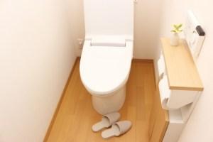 便利掃除グッズが排水管を詰まらせる原因になっているかも⁉︎見えない排水管をキレイにする方法