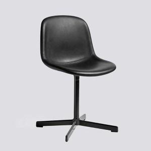 HAY NOEU 10 Meeting Chair