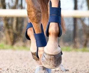 Horze tendon boots blue 1 horze tendon boots