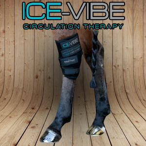Ice Vibe Boots Hock