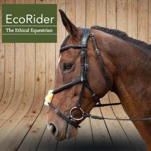 EcoRider Bridle