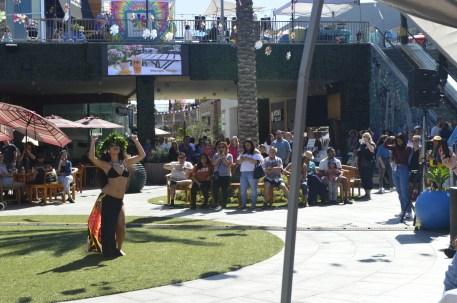 gardenwalk multiculturla festival (28)