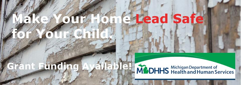 MDHHS LSHP Slide