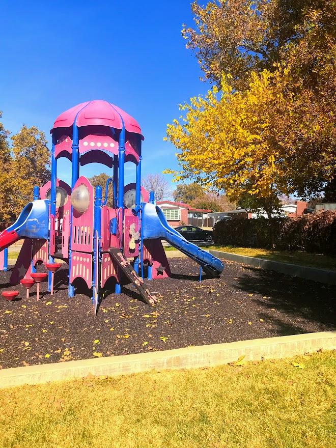 Hoggans Park Old Playground