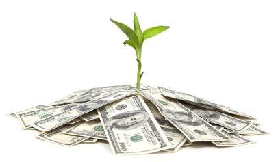 Follow the Marijuana Money