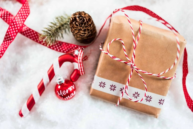 eco friendly gifts guide