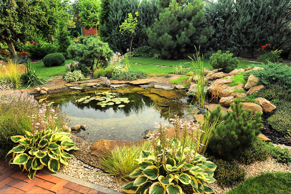 Yorkshire Pond design