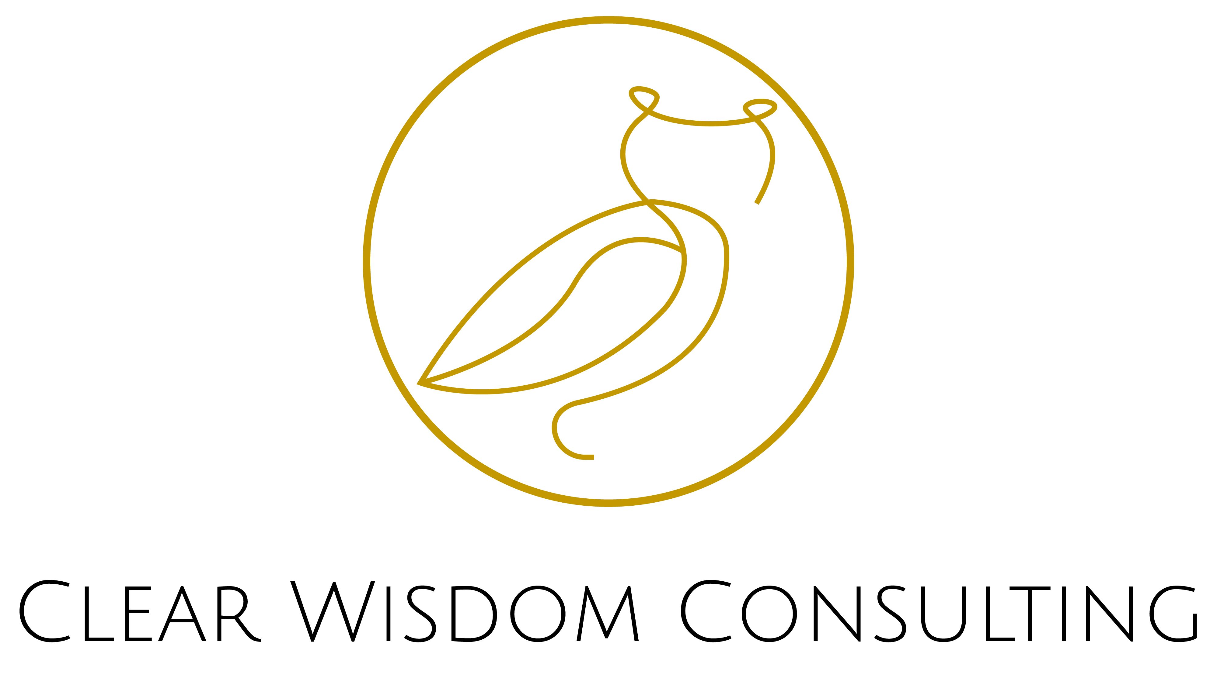 Clear Wisdom Consulting