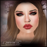 Aerlin-v3-NEW-poster