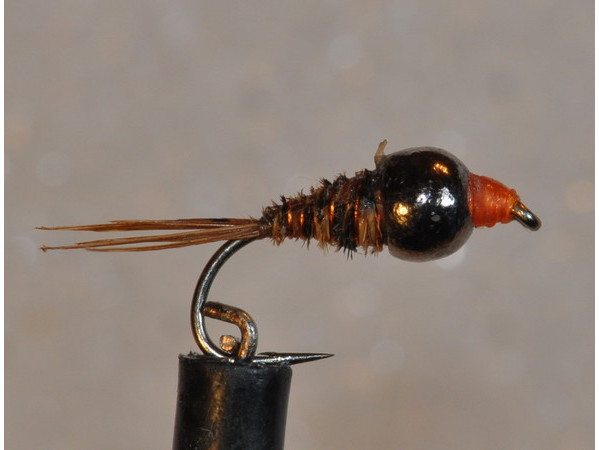 Quelques mouches de ma collection 2010