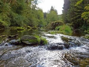 Moulin du milieu 2