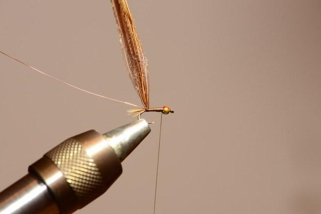 Nymphe bille tungstene multi color 3