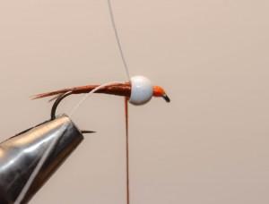 Nymphe a bille fil verni (8)