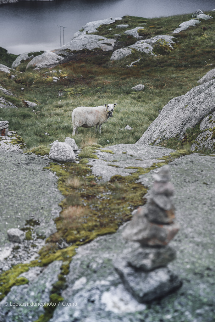 Kjeragobolten Norvège Van Tau