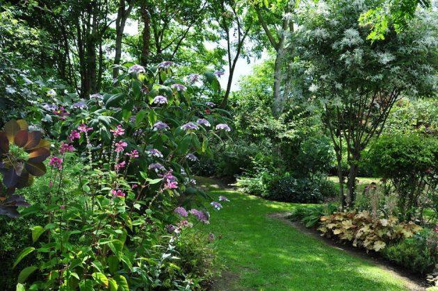 cr er et am nager un jardin l 39 anglaise clem around the. Black Bedroom Furniture Sets. Home Design Ideas