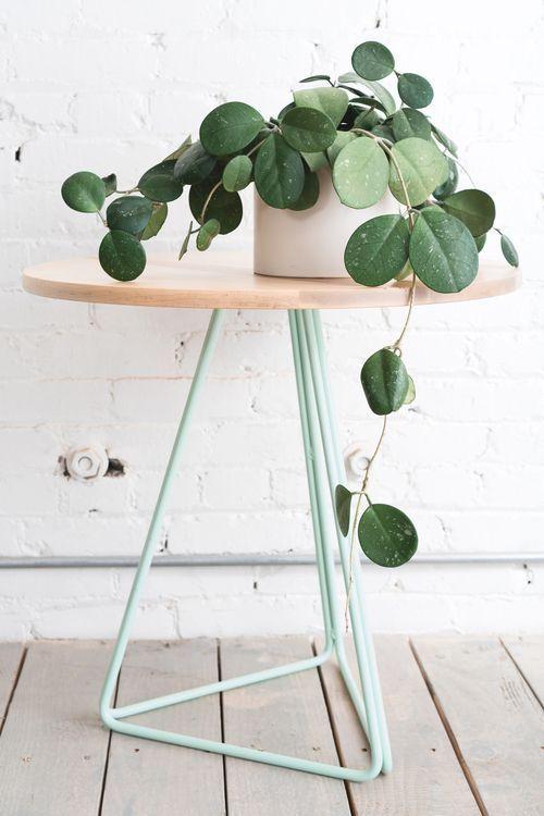 aménager 20m2 plante verte tabouret bois design décoration intérieur blog déco