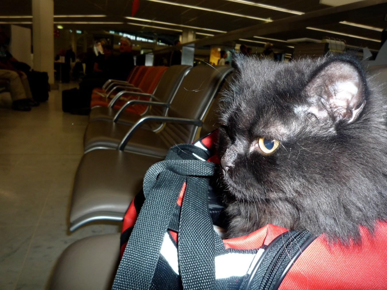 A l'aéroport