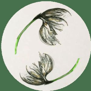 Cotton Grass Motif by Clement Design