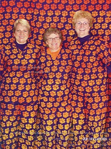 The Loonies set the bar high: Christine Faenza, Deborah Nelson and Beth Williams, dressed in their Tiger Paw scrubs, were featured in the Hyundai ad about fan loyalty.