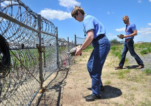 Port Authority wildlife staff about to release JFK Airport nesting turtles safely off the airfield and back to nature.