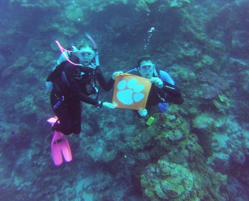 Honduras: Siblings Nick '14 and Alyssa '17 James scuba dive 60 feet underwater with their Tiger Rag in Roatan.