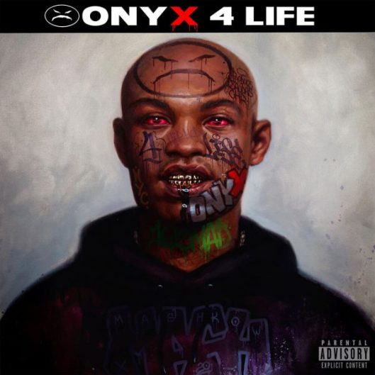 Image result for Onyx 4 Life Onyx