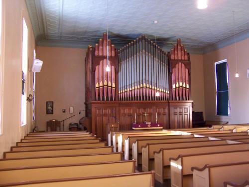 Organ 7
