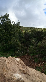 Apoyado en la roca calientito recién caída del cerro