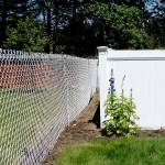 Chain Link Fence Along with a Vinyl Fence