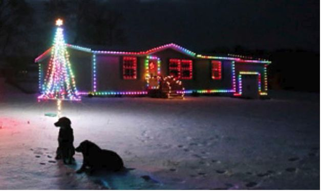 Internet Controlled Christmas Lights