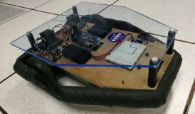 Mind and Gesture Controlled Robot