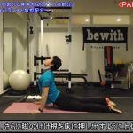 【動画あり】姿勢のバランスに大きく影響する4つのエリア