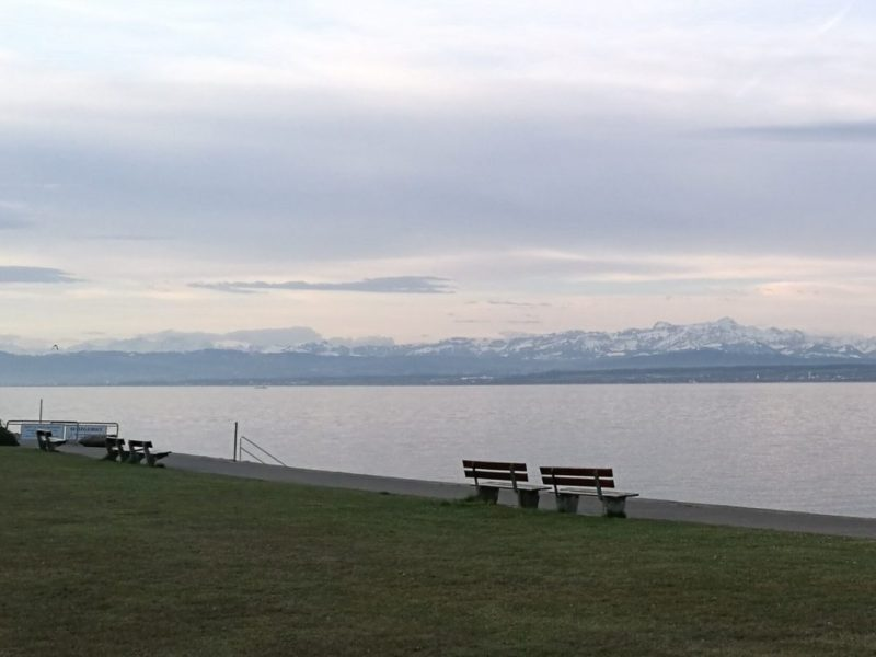 Morgens am Bodensee