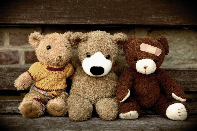 Kuschelcamper? Oder einfach nur Teddys?