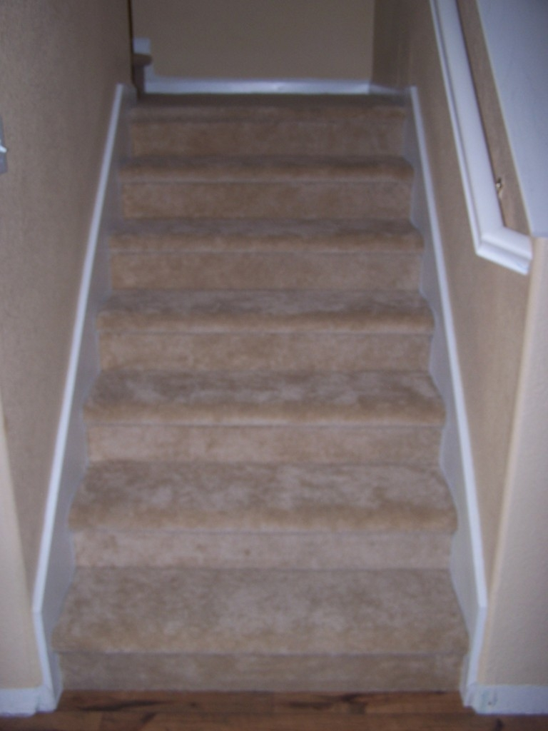Finished Flooring Product From Glines Carpet One Floor Home | Carpet Tiles For Steps