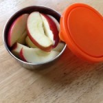 Review and Giveaway: Stainless Steel BPA-Free Storage Containers